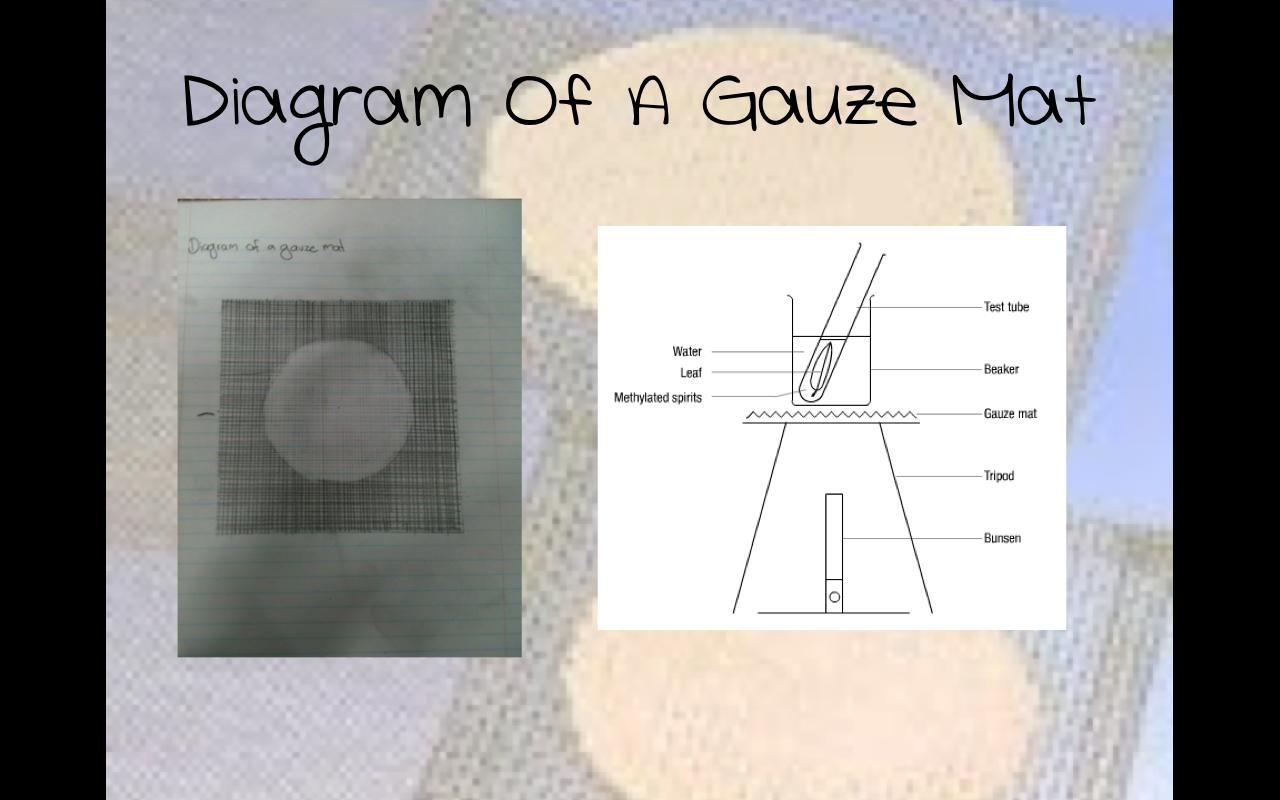 2013 9a Science Gauze Mat