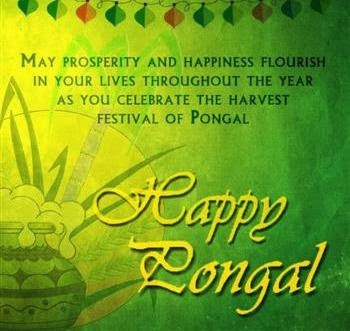 Kaanum Pongal 2016 SMS Greetings Wishes Messages