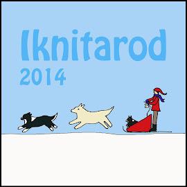 2014 Iknitarod Race