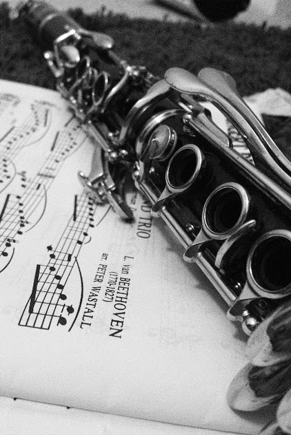 A Photo Of My Clarinet