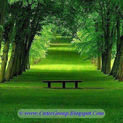 Summer Park , Chamarande , France