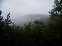 Smoky Mountain Fog