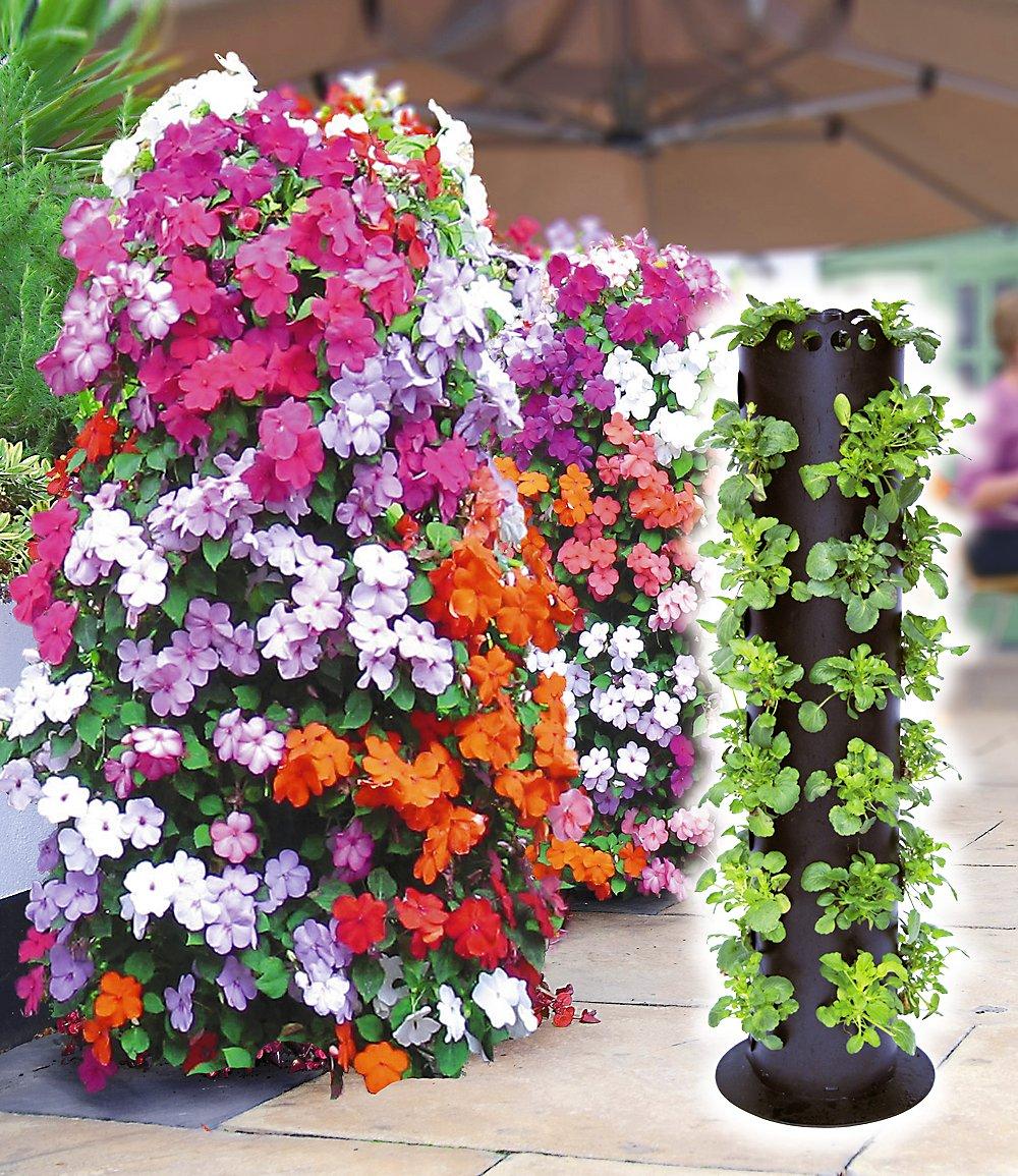 Living wall garden chinaforefrontinternational for Flower wall garden
