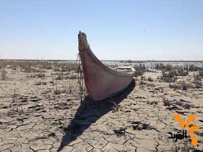 «رحلة إلى الأهوار العراقية» مأساة مزدوجة حول التخريب الإيراني وسرقة جهود البحرين