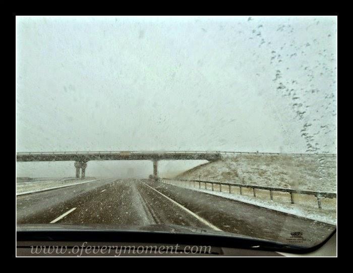 snow, spring storm
