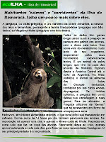 ecoILHA: Preguiça na Ilha