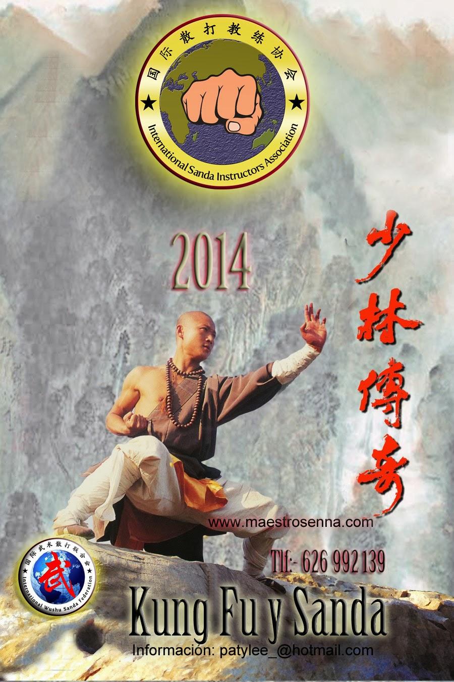 clases de Kung Fu Alcala de henares