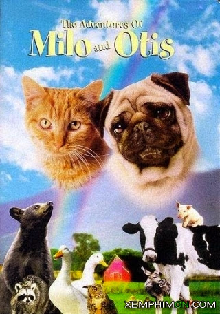 Cuộc Phiêu Lưu Của Chó Và Mèo HD Vietsub Lồng tiếng