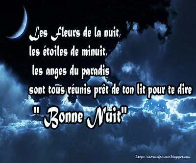 sms bonne nuit mon amour