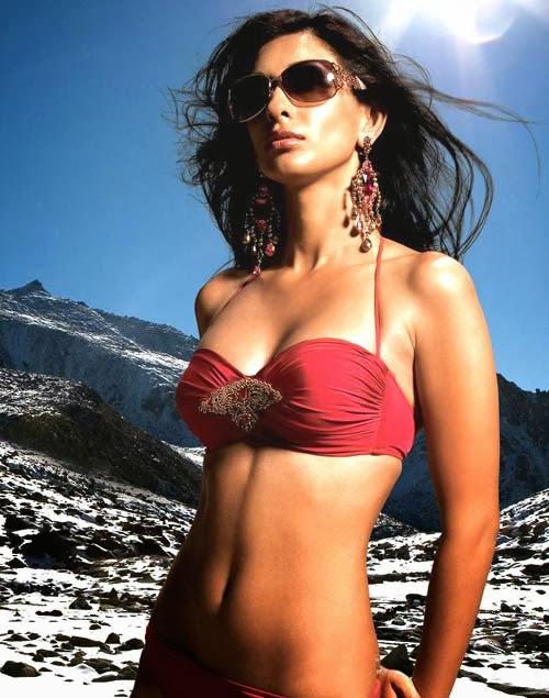 Preeti Desai looks hot in swimsuit