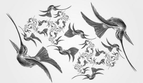Formas de la naturaleza con fractales