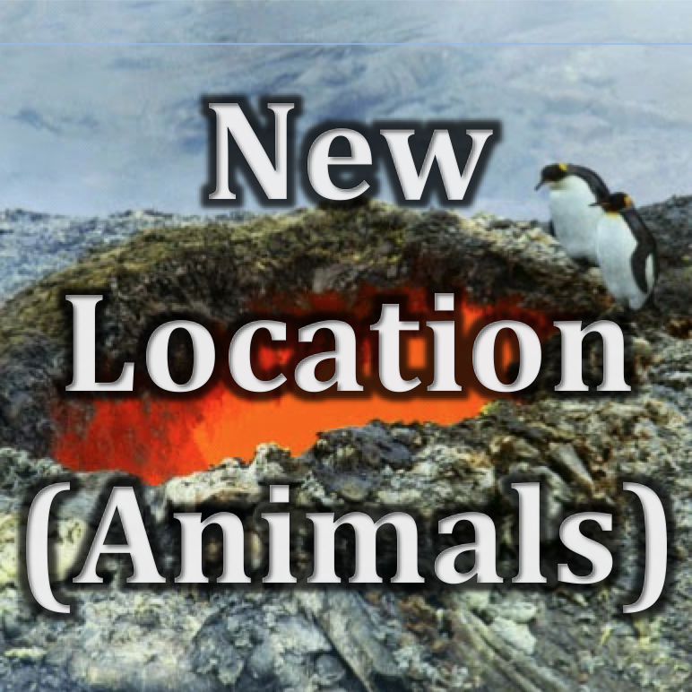 Digital Art (10-12) | Animal in a New Location