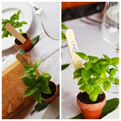 fűszernövény dekoráció