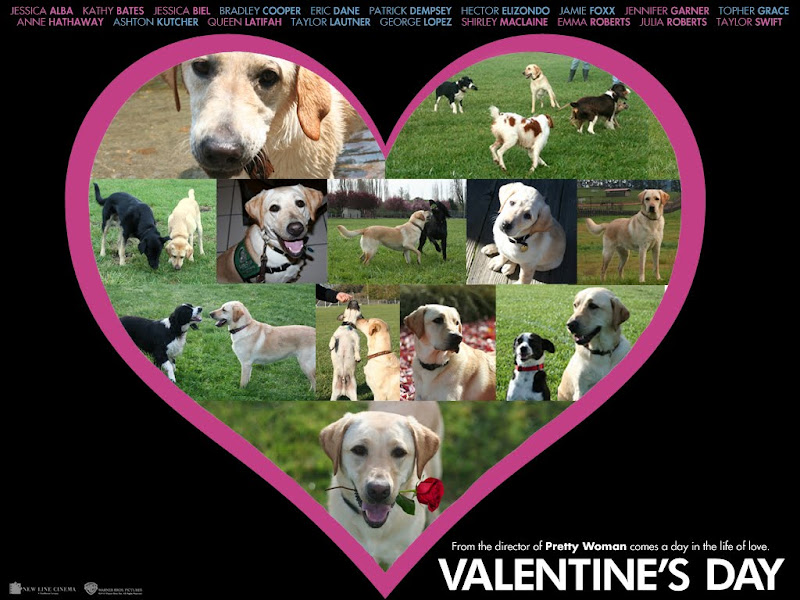 movie poster for the movie Valentines Day, but the celebrity photos have been removed, and there are pictures of Cabana and her friends instead