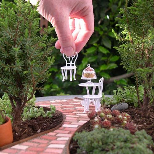 Suculentas e bonsais E para formar o cenário uma mesa com bolo