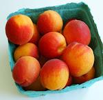 apricot-tart-apricots.jpg