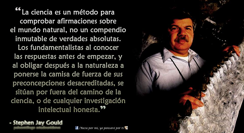 stephen jay gould essay collection Lived 1941 - 2002 stephen jay gould is best known for the theory of punctuated equilibrium, which proposes that evolution of species is not a slow, gradual.