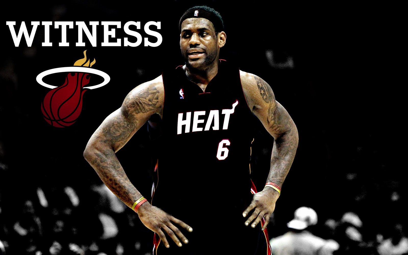 LeBron James Heat