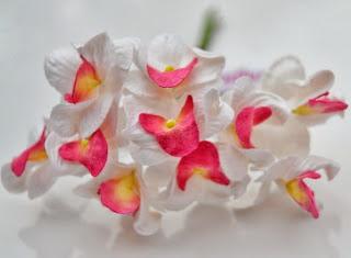 http://www.stromstadscrapbooking.se/blommor-orkider-c-74_213.html