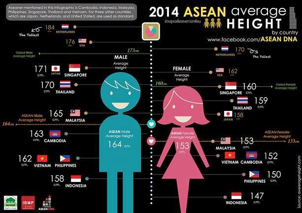 ASEAN Average Height