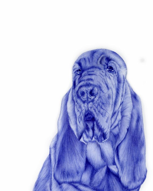 06-Dog-Sarah-Esteje-ABADIDABOU-Hyper-realistic-Ballpoint-Pen-Animals-www-designstack-co