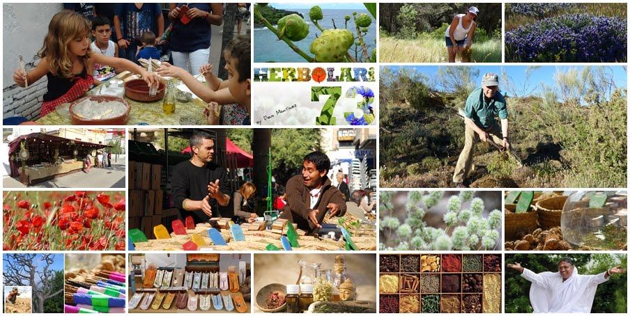 Herbolari 73 - Plantas medicinales. Aromaterapia
