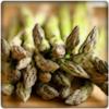 Buang Jauh Stress dengan Asparagus