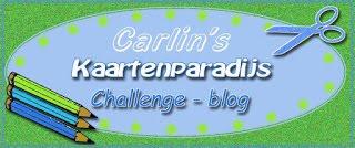 Kaartenpardijs