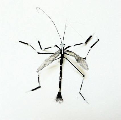 لوحات فنية لأوراق الشجر وبعض الأعمال الفنية من شعر  Hair-insects5