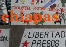 SOLIDARIDAD CHIAPAS