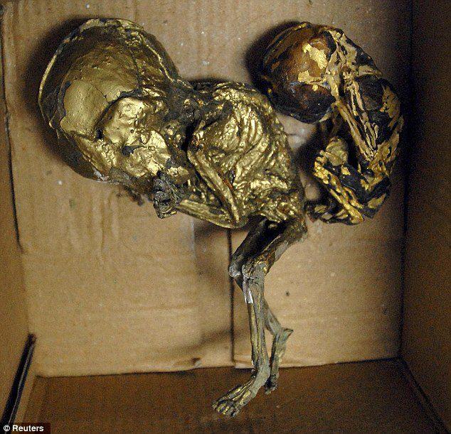 Unborn Fetuses Used For Black Magic