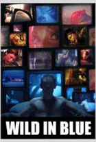 Wild in Blue (2014) HD 720p Subtitulados