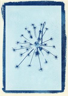 Cyanotype de Jean-Bernard Vuille