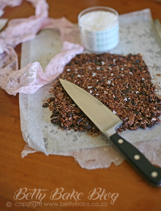 seed bars, chocolate, picnic, gluten free, betty bake,