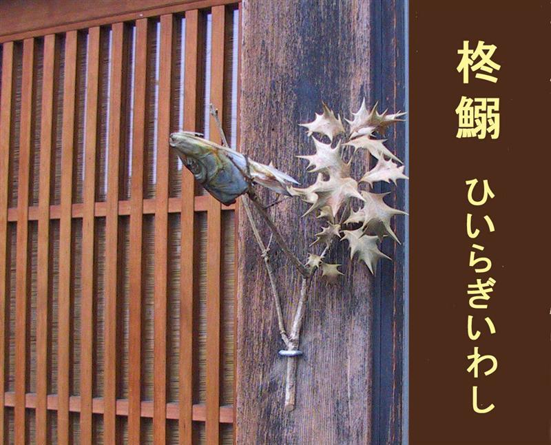 柊鰯の画像 p1_17