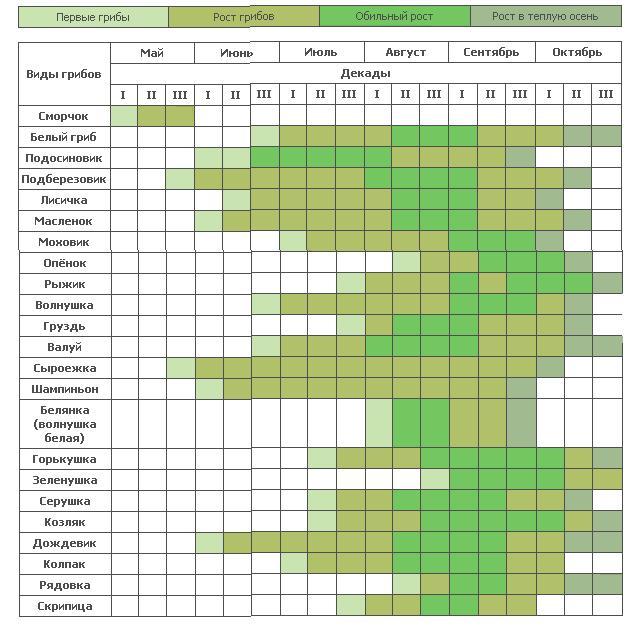 Календарь грибника 2015 для Московской области и средней полосы России