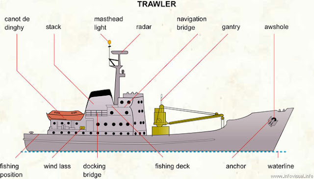 English for logistics and hull maintenance types and for How to ship fish