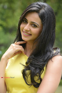 Rakul Preet Singh  Pictures in Yellow Dress at Rough Movie Logo Launch  0037.jpg