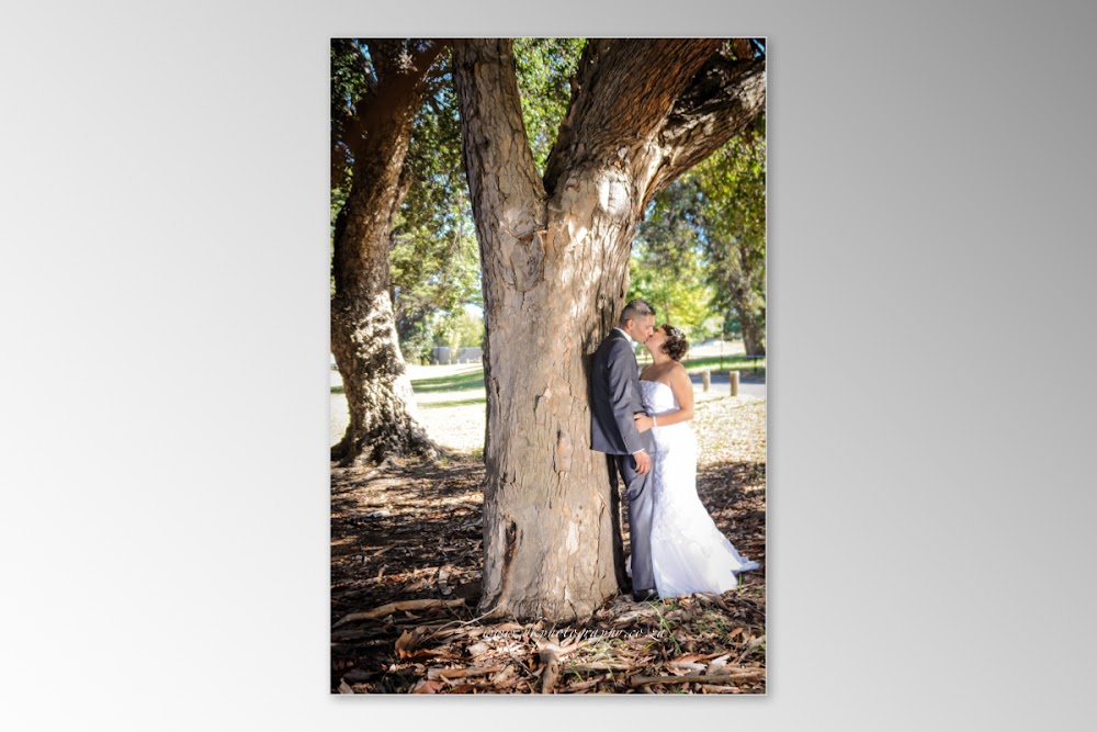 DK Photography Slideshow+DVD-209 Tania & Grant's Wedding in Waterfront | Atlantic Imbizo  Cape Town Wedding photographer