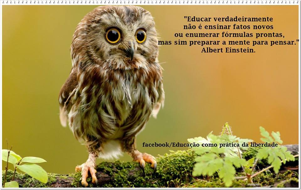 A gestão democrática na educação pública brasileira 1
