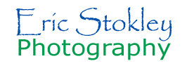 Eric Stokley