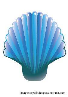 Concha con colores azules