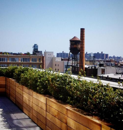 View from Wythe Hotel Rooftop Bar in Williamsburg