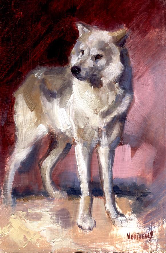 Joe Weatherly Fine Art: White Wolf