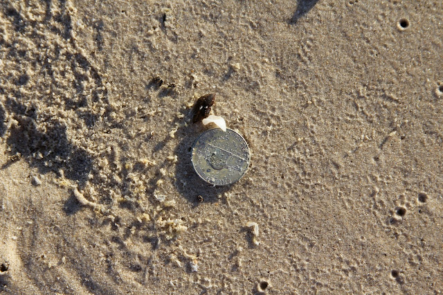 Found a Nickel at Matagorda Beach