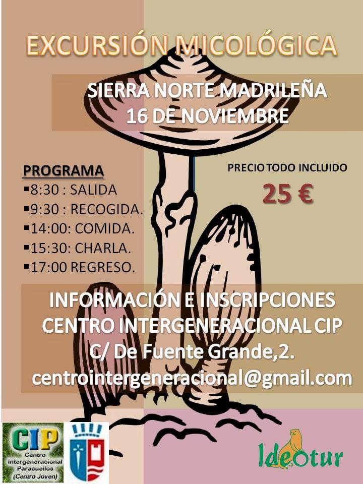 Excursi n micol gica 2013 sierra de madrid - Tiempo en paracuellos ...
