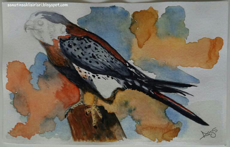Resim Sanatı : Suluboya Resimleri