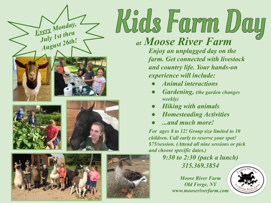 Moose River Farm Blog