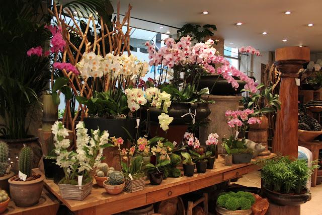 Flower Shop Interior Viewing Gallery