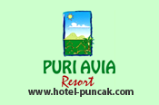 <b>puri-avia</b>
